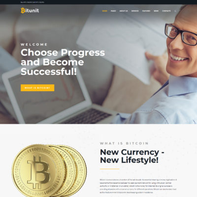free bitcoin wordpress theme