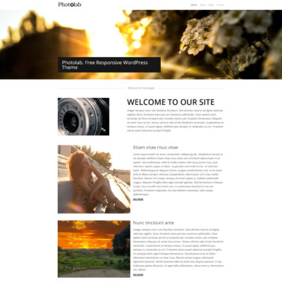 free artist wordpress theme